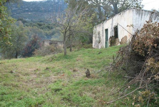 traditional house, sale, plot, panoramic, view, neapoli, crete